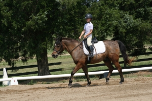 Fellowship Farm Riding Lessons