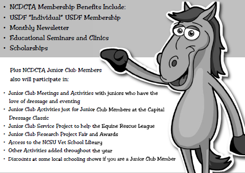 NCDCTA Junior Club